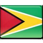 Le VPN en Guyane